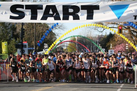 10 Things To Expect at The TC10K